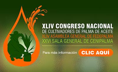 banner_congreso_fedepalma_paginaweb_minisitio